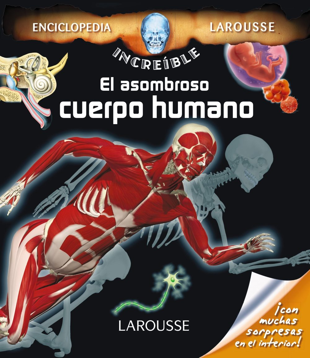 El Asombroso Cuerpo Humano (2ª Ed.) (enciclopedia Increible Larousse) por Vv.aa.