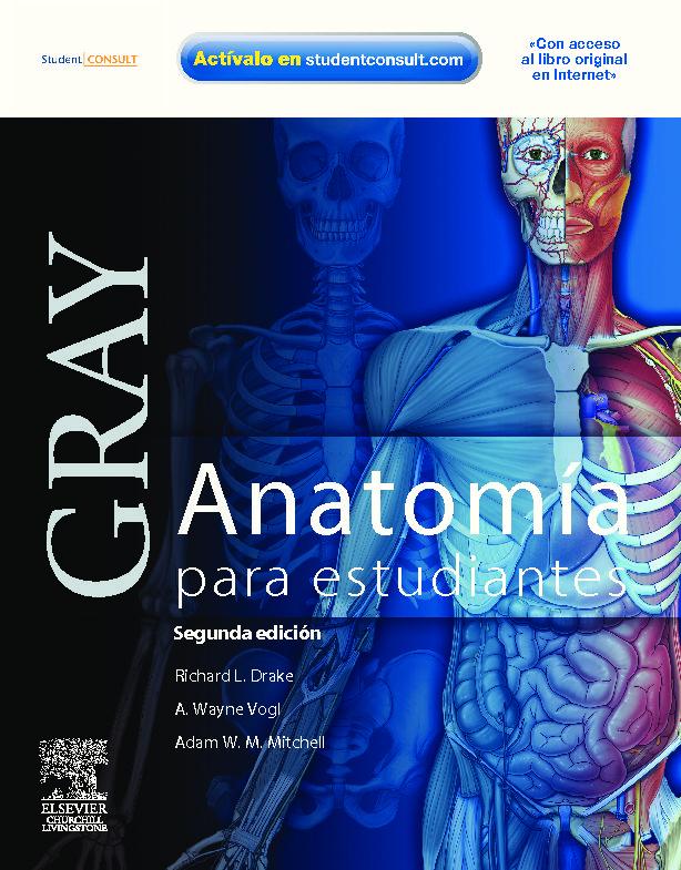 GRAY: ANATOMIA PARA ESTUDIANTES (CON ACCESO AL STUDENT CONSULT) ( 2ª ...