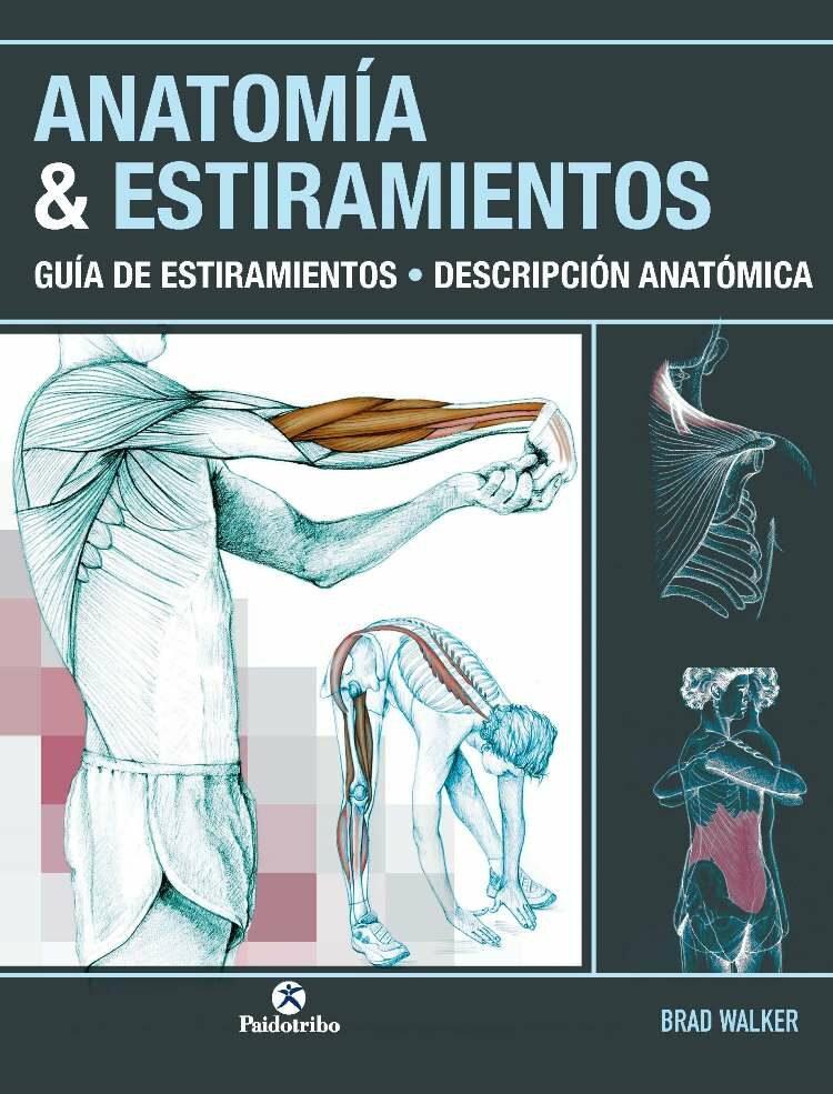 ANATOMIA & ESTIRAMIENTOS: GUIA DE ESTIRAMIENTOS DESCRIPCION ...