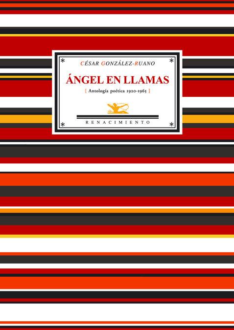 Angel En Llamas: 47 Sonetos Y Un Poema por Cesar Gonzalez-ruano epub