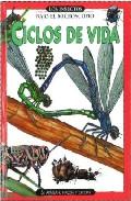 Los Insectos, Vol 1. Ciclos De Vida por Francis Joy epub