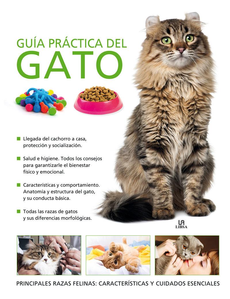 GUIA PRACTICA DEL GATO   CLAIRE BESSANT   Comprar libro 9788466225762