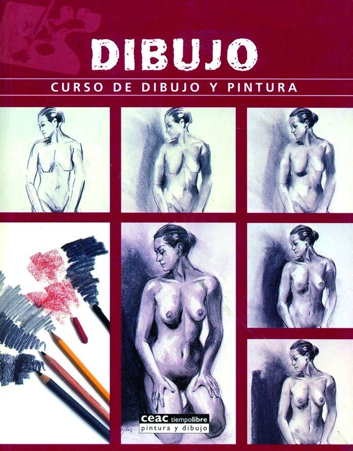Dibujo: Curso De Dibujo Y Pintura por Vv.aa. Gratis