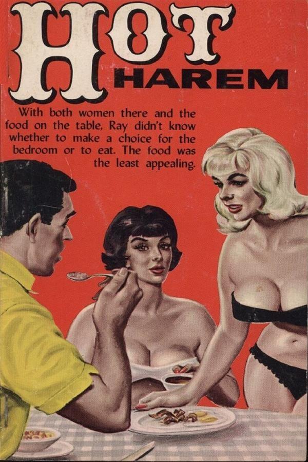 hot harem - erotic novel (ebook)-9788827538272
