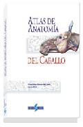 (i.b.d.) Atlas De Anatomia Del Caballo por Klaus Dieter Budras;                                                                                                                                                                                                          W. O. Sack;                epub
