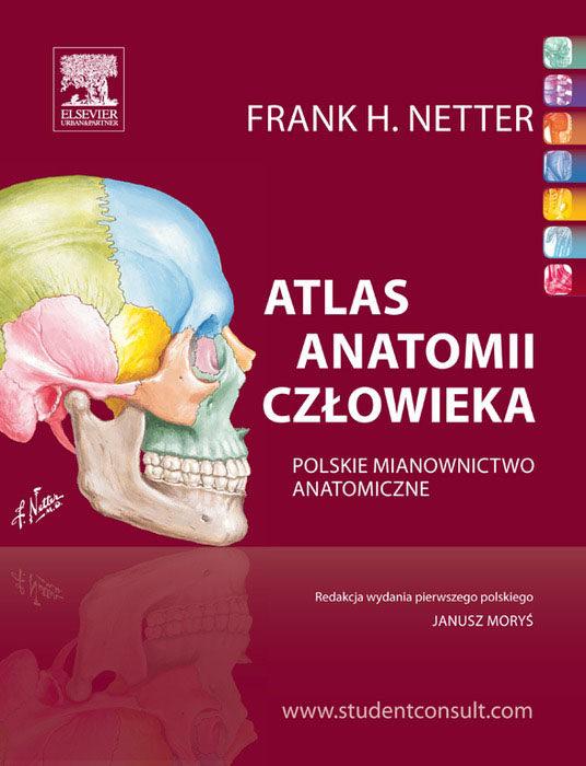 Atlas Anatomii Czlowieka Pdf