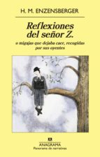 reflexiones del señor z (ebook)-hans magnus enzensberger-9788433935502
