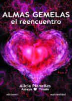 almas gemelas: el reencuentro-alicia planelles-9788496851412