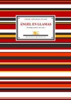angel en llamas: 47 sonetos y un poema-cesar gonzalez-ruano-9788484722632