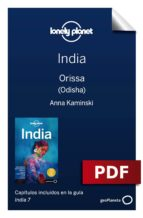 india 7_15. orissa (odisha) (ebook)-abigail blasi-michael benanav-9788408197942