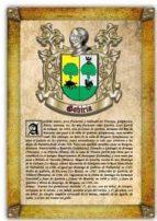 apellido gabiria / origen, historia y heráldica de los linajes y apellidos españoles e hispanoamericanos (ebook) antonio tapia cdlhf00015352