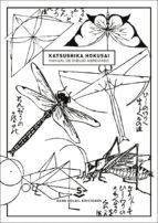 manual de dibujo abreviado-david almazan tomas-hokusai katsushika-9788494735462