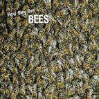 how they live... bees (ebook)-david withrington-ivan esenko-9789616978262