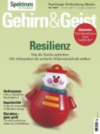 gehirn&geist 11/2017 - resilienz (ebook)-9783958921672