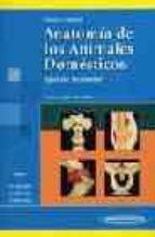 anatomia de los animales domesticos. obra completa (2 vol.) (tomo i: aparato locomotor, tomo ii: organos, sistema circulatorio y sistema nervioso)-hans-georg liebich-horst erich könig-9788479037482