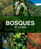 (pe) bosques de españa-joaquin araujo-9788497857482