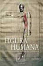 HISTORIA DE LAS TEORIAS DE LA FIGURA HUMANA