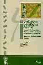 evaluacion psicologica forense (vol. 1): fuentes de informacion, abusos sexuales, testimonio, peligrosidad y reincidencia-9788481961492