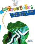 LOS GUSANOS DE SEDA (EDUCACION INFANTIL) - 9788466788212 - VV.AA.