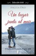 UN LUGAR JUNTO AL MAR (EBOOK) - 9788490693612 - ANGELA DREI