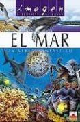 EL MAR, UN UNIVERSO FANTASTICO (INCLUYE PUZZLE) - 9782215066132 - VALIN LE DU