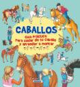 CABALLOS, GUIA PRACTICA PARA CUIDAR DE TU CABALLO Y APRENDER A MONTAR - 9788467751482 - GISELA SOCOLOVSKY, SILVINA (ILUSTRACIONES) SOCOLOVSKY