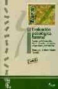 EVALUACION PSICOLOGICA FORENSE (VOL. 1): FUENTES DE INFORMACION, ABUSOS SEXUALES, TESTIMONIO, PELIGROSIDAD Y REINCIDENCIA - 9788481961492 - VV.AA.
