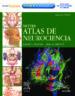 NETTER: ATLAS DE NEUROCIENCIA + STUDENT CONSULT (2ª ED.) D. L. FELTEN A. N. SHETTY