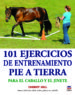 101 EJERCICIOS DE ENTRENAMIENTO PIE A TIERRA CHERRY HILL