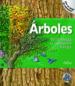 ARBOLES: DE LA SEMILLA AL IMPONENTE BOSQUE (INFINITY) DAVID BURNIE PAUL M. MUCHINSKY
