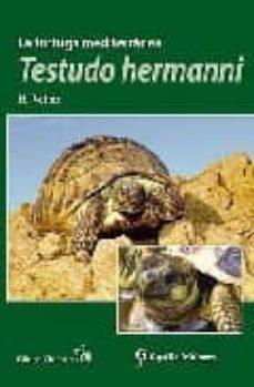 Geekmag.es La Tortuga Mediterranea: Testudo Hermanni Image
