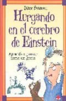 Costosdelaimpunidad.mx Hurgando En El Cerebro De Einstein Image