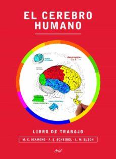 Comercioslatinos.es El Cerebro Humano: Libro De Trabajo Image