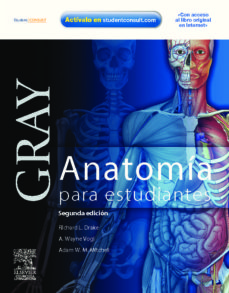 Bressoamisuradi.it Gray: Anatomia Para Estudiantes (Con Acceso Al Student Consult) ( 2ª Ed) Image