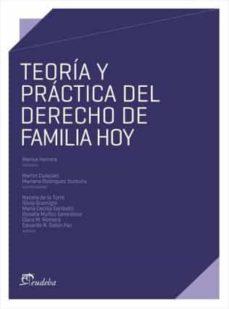 teoría y práctica del derecho de familia hoy (ebook)-marisa herrera-9789502320212