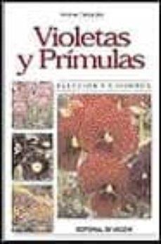 Followusmedia.es Violetas Y Primulas: Eleccion Y Cuidados Image