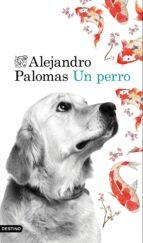 un perro (ebook)-alejandro palomas-9788423350452